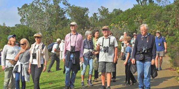 Kirstenbosch Bird Walk –  10 September 2019 led by Daryl de Beer.