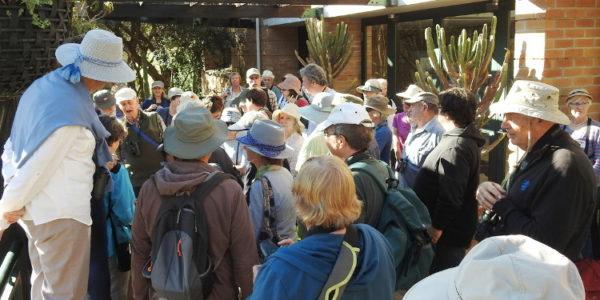 Kirstenbosch Bird Walk –  15 October 2019 led by Otto Schmidt and Margaret Maciver.
