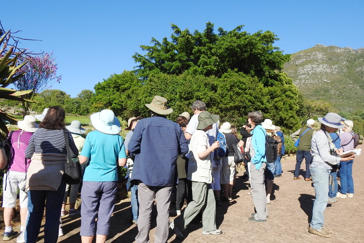cbc kirstenbosch walk 03 MMci oct 2019