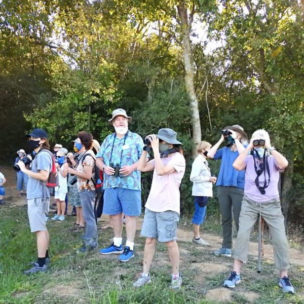 Outing to the Majik Forest, Durbanville –  Led by Kevin Drummond Hay – 18 April 2021.