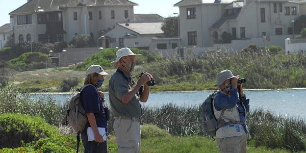 CWAC at Zandvlei Nature Reserve – 17 April 2021.
