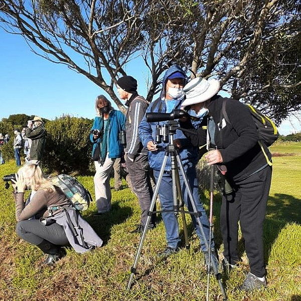 Outing to the Dick Dent Bird Sanctuary, Strand –  Led by Vic Smith – 16 May 2021.