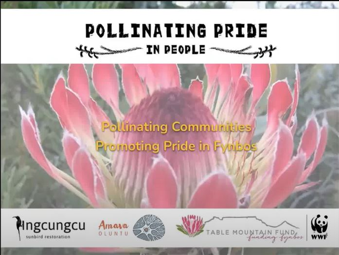 Pollinating Pride in People