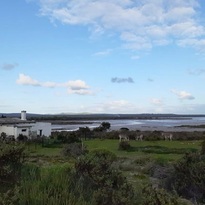 Outing to the Blombosch Farm, Yzerfontein –  27 – 29 July 2021.